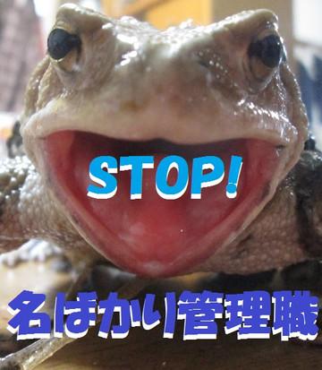 Stop_4