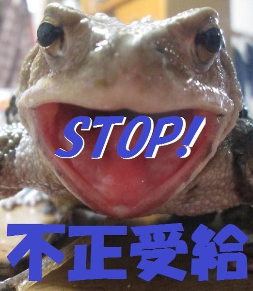 Stop_5